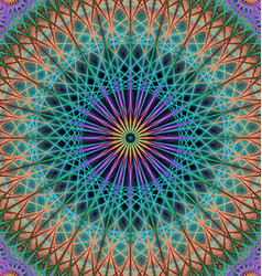 Colorful mandala structure background vector