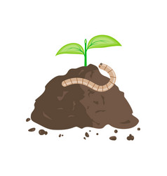 earthworm and pile of ground vector image