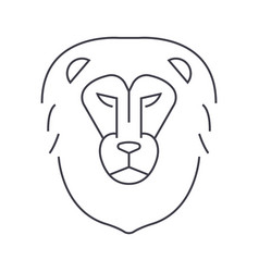lion head line icon sign on vector image vector image