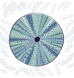 Sea urchin colorful vector