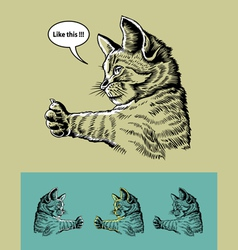 Thumb up cat vector image