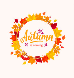 Autumn is coming banner with frame from leaves vector