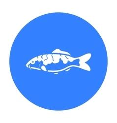 Carp-koi fish icon black singe aquarium fish icon vector