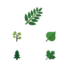 Flat icon ecology set of oaken garden park and vector