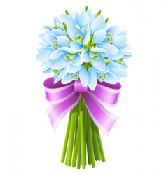 spring snowdrop flowers vector image vector image