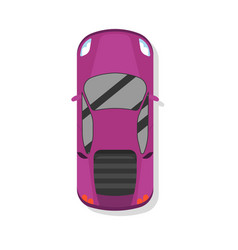top view modern sport car isolated icon vector image vector image