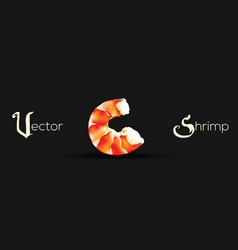Shrimp seafood prawn isolated vector