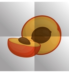 Fruit icon design vector