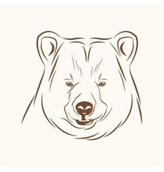 bear free spirit sketch image vector image