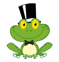 Frog Groom vector image