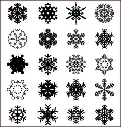 Snowflakes on a white vector