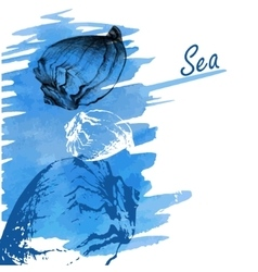 Handdrawn seashells on a watercolor sea background vector