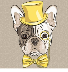 hipster dog French Bulldog breed vector image