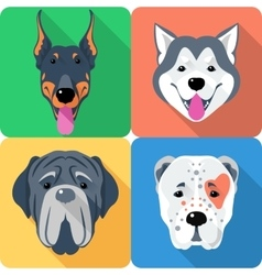 set 9 dog head icon flat design vector image vector image