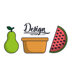 Fruits and basket icon vector