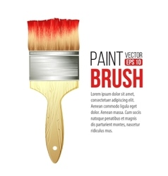 Paint brushes isolated on white vector