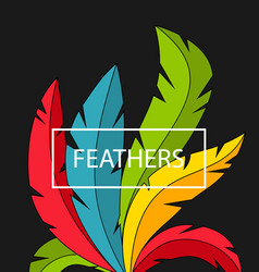 Creative background with colorful feathers vector