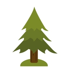 Pine tree forest camping icon vector