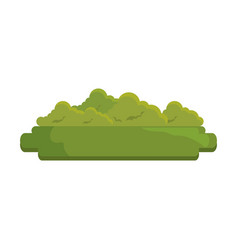 Green bush icon vector