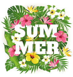 summer times vector image vector image
