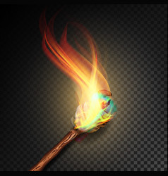torch with flame realistic fire realistic fire vector image vector image