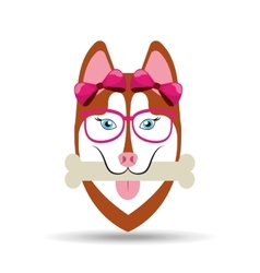 Fashion female dog ribbon glasses and bone vector