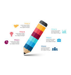 pencil infographic education diagram vector image