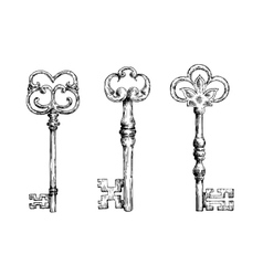 Isolated medieval victorian forged keys sketches vector