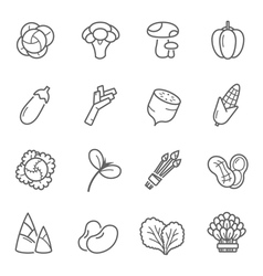 Lines icon set - vegetable vector