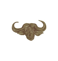African buffalo head drawing vector