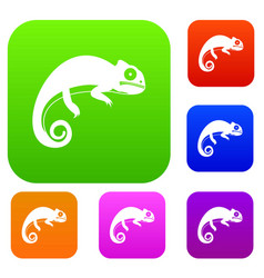 Chameleon set collection vector