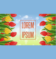 Spring congratulation card with blooming tulip vector