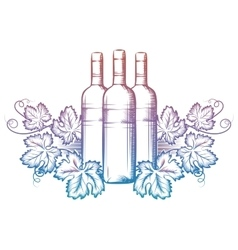 Wine bottle and grape leaves vector image vector image