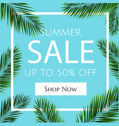 Sale banner with palm trees vector