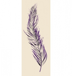 Purple feather vector