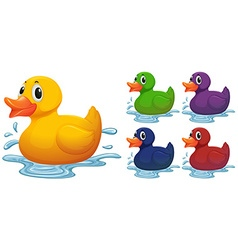 Duck toy in different color vector