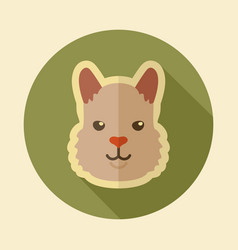 Lama flat icon animal head symbol vector