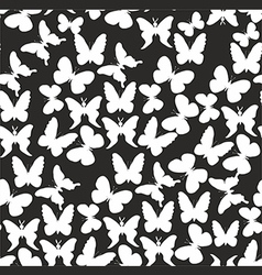 Pattern with white butterflies on a black vector