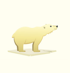 polar white bear cartoon arctic animal vector image