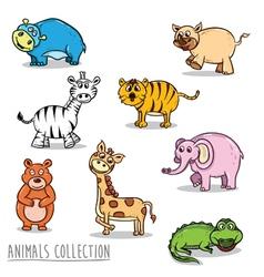 animal 1 ok vector image