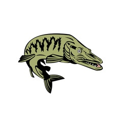 Muskie muskellunge fish retro vector