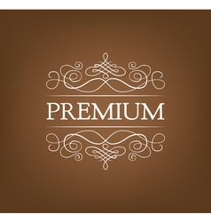Premium vintage elements and page decoration vector