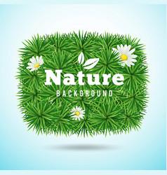 Green grass and flower vector