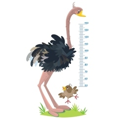 Meter wall with funny sparrow and ostrich vector