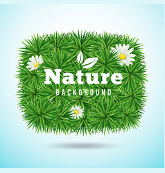 green grass and flower vector image vector image