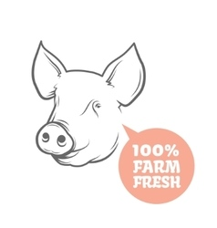 Pig logo design template vector