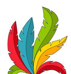 Colorful feathers on white background vector