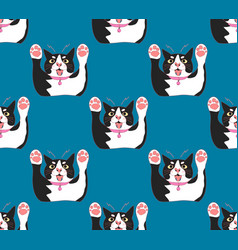 cute black and white cat attack on indigo blue vector image