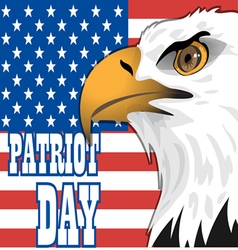 Patriot day card with the flag of unites states of vector