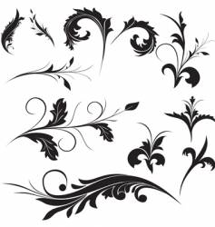 floral ornament elements vector image